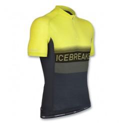 Icebreaker Team Jersey SS